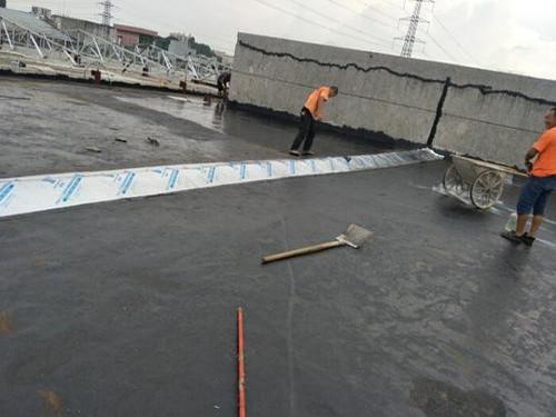 赣榆楼顶防水多少钱一平米