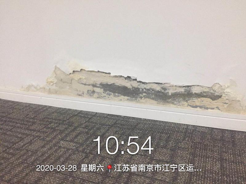 合肥管委会6楼墙面乳胶漆修补