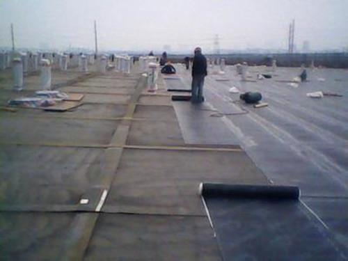 相城屋面防水工程预算表